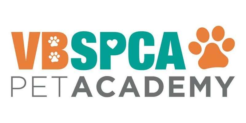VBSPCA Pet Academy 4 Week Course | Puppy Training 101 (Sunday Mornings)